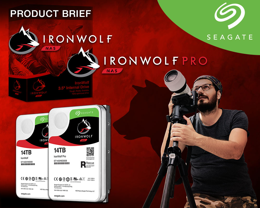 Seagate 14TB Ironwolf Family Brief